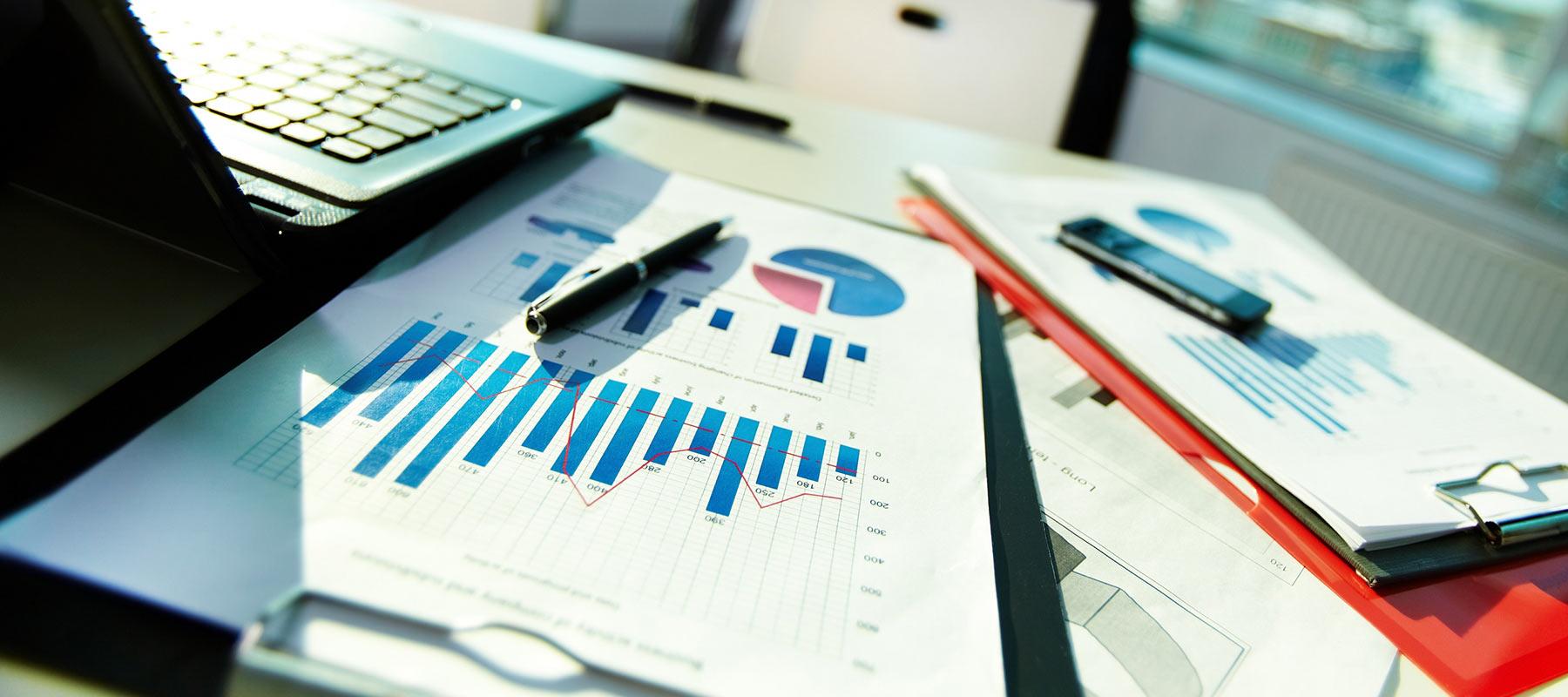 Domestic Market Research